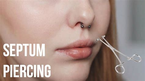 Price Getting Some Piercing Done by Getting My Septum Pierced My Experience Faqs