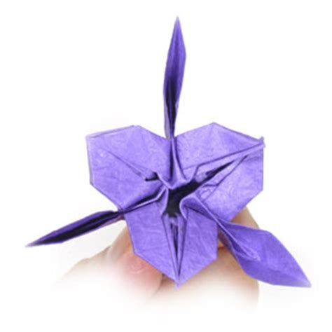 Iris Flower Origami - how to make an origami iris flower page 24