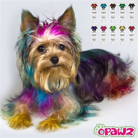 yorkie products opawz supply hair dye pet glitter gel wax spa products baby