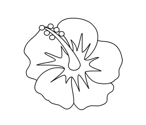 coloring pictures of hibiscus flowers 502 bad gateway