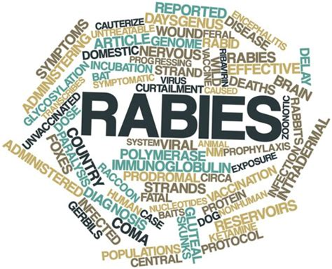 how much is rabies for increase in rabies cases in saskatchewan