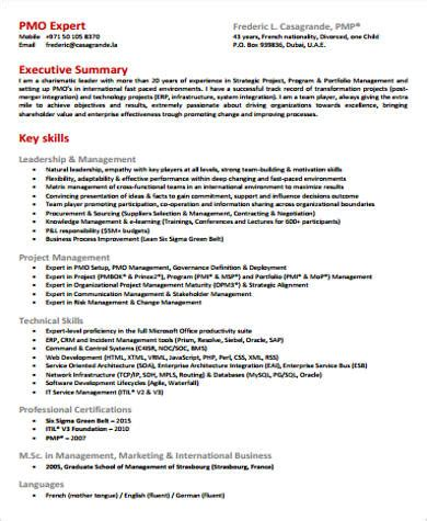 what goes in the summary part of a resume examples of summary