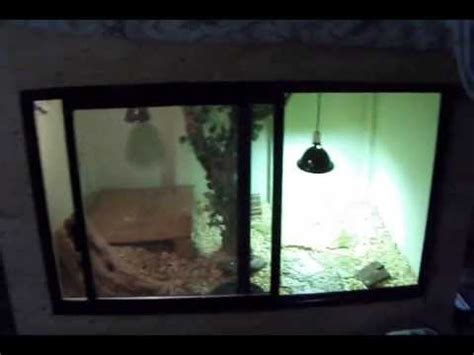tegu cage set up youtube