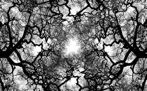 abstract tree pattern download tree veins wallpaper 1920x1200 wallpoper 388899