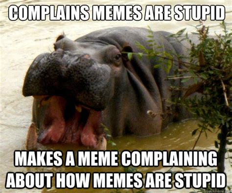 Baby Hippo Meme - complains memes are stupid makes a meme complaining about