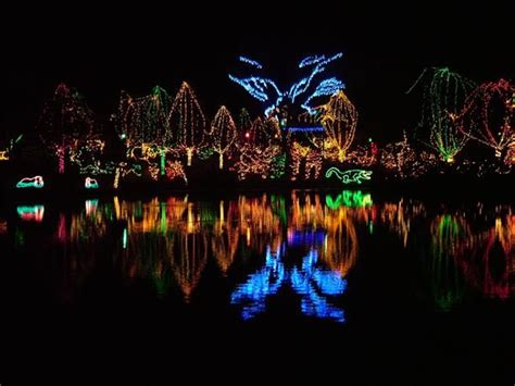96 Best Creative Christmas Lights Images On Pinterest Columbus Zoo Light Show