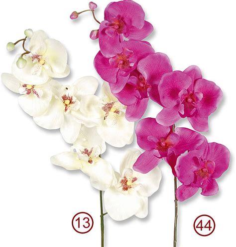 alternative für duschvorhang seidenblumen g 195 188 nstig kaufen