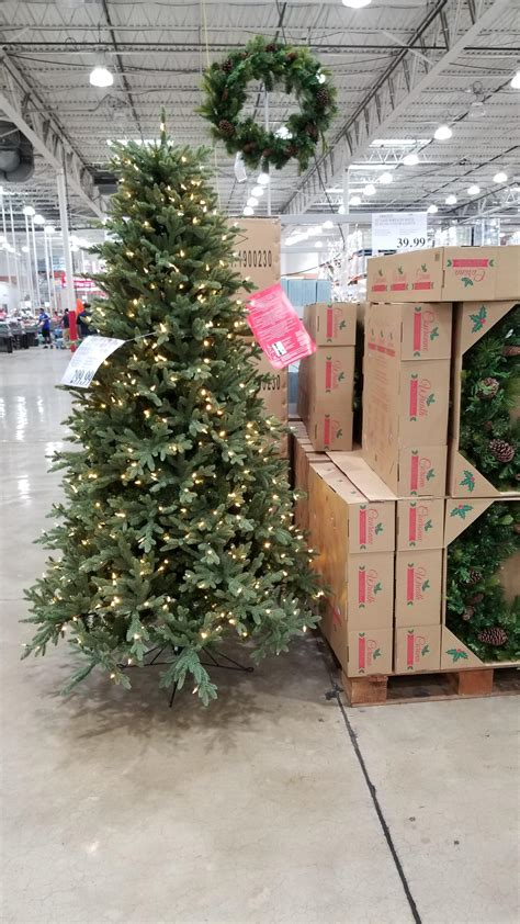 what stores sell christmas trees tree outstanding does costco sell trees when does costco sell