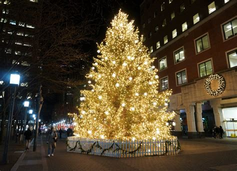 biggest christmas house nyc new york clich 233 of the day the largest tree in new york clich 233