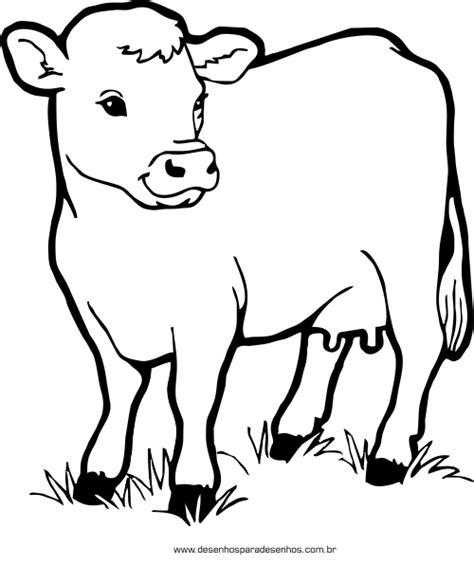 desenho de animais confira dicas de desenhos de animais para colorir e