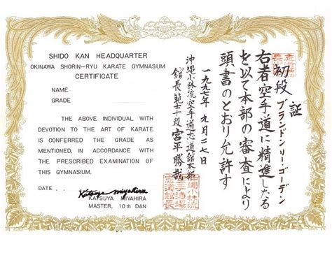 black belt certificate template karate black belt certificate templates 28 images