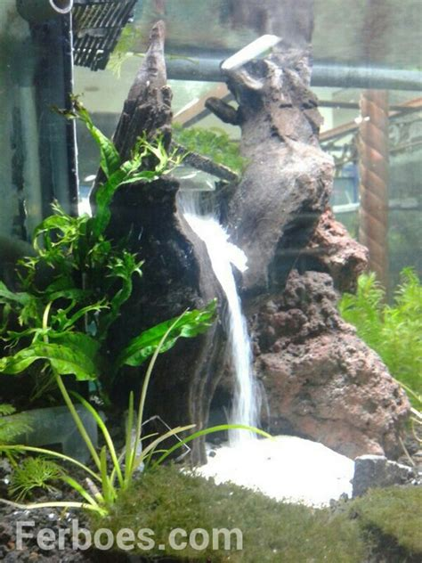 aquascape waterfall learn and make aquascape waterfall learning and creating a simple but special