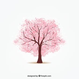 Pictures Of Cherry Blossoms by Cherry Blossom Tree Vectors Photos And Psd Files Free