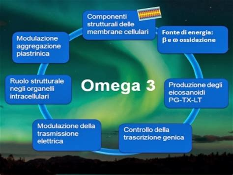 alimenti omega 3 una dieta ricca di omega 6 e omega 3 protegge dall infarto