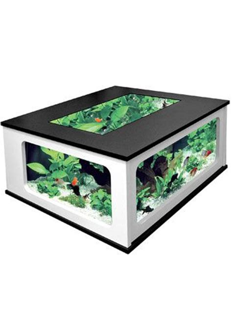 aquarium coffee table plans how to build your own fish tank coffee table woodworking
