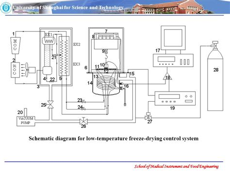freeze drying phase diagram chapter 3 equipment of freeze drying ppt