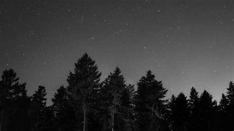 starry night monochrome  ultrahd wallpaper backiee