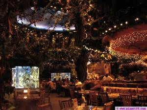 Rainforest Cafe Las Vegas Rainforest Cafe With Photo Via Planet99