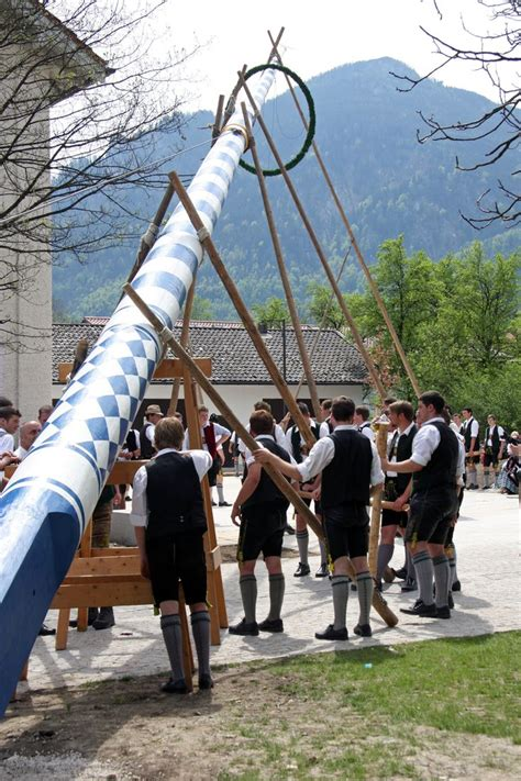 A Maibaum Of Your Own by 53 Best Maibaum Images On Germany Austria And