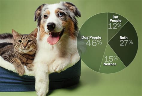 puppy slideshow personality differences between and cat siowfa15 science in our world