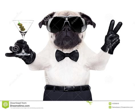 peace puppies cool peace stock photo image 44068849