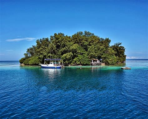pulau macan eco resort endangered