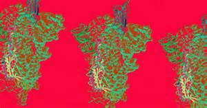 map  key coronavirus protein  lead  vaccine