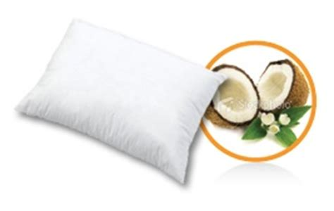 Coconut Bliss Pillow by Coconut Bliss Pillow Best Pillow Gift Ideas