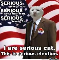 Serious Meme - serious cat by bakoahmed meme center