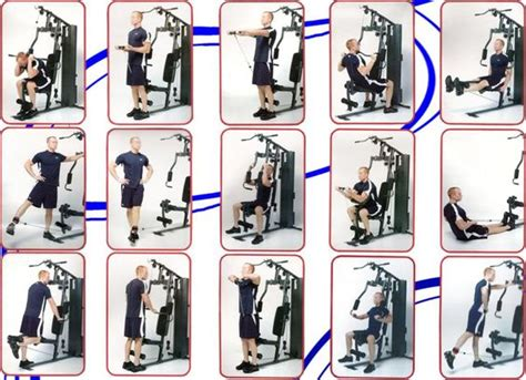 marcy 988 exercise chart marcy home workout poster