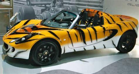 imagenes autos increibles autos increibles taringa