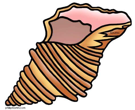shell clipart shells clipart clipart best