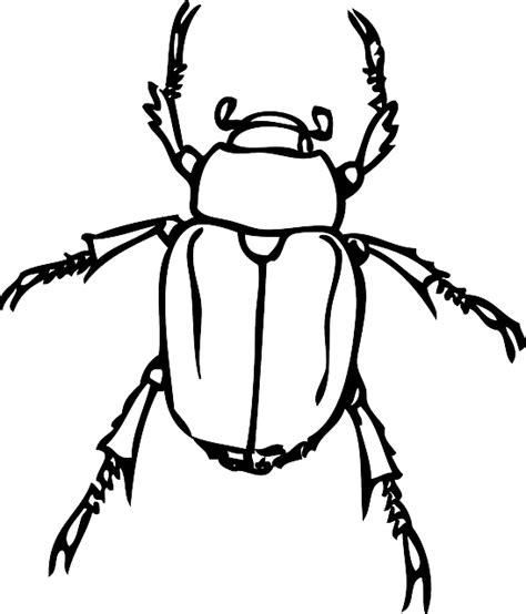 japanese beetle coloring page free vector graphic beetle japanese beetle june bug