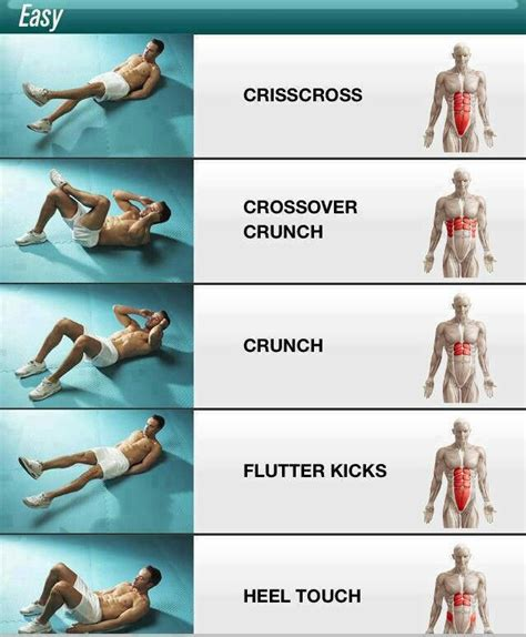 ab workouts  shows   muscles  targets