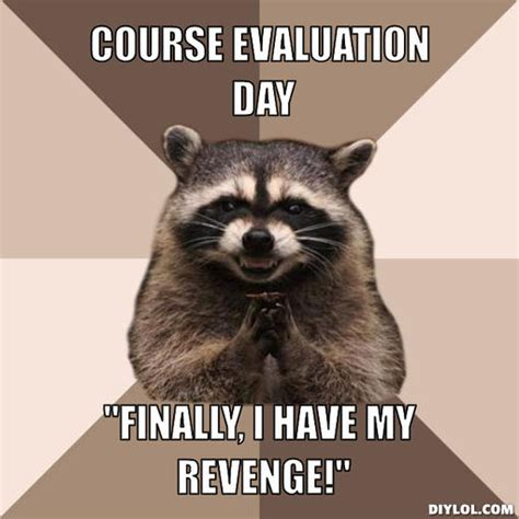 Raccoon Memes - evil plotting raccoon meme generator course evaluation day