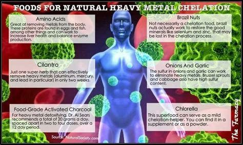 Foods Heavy Metal Detox by 14 Best Get Healthy Detox Your Images On