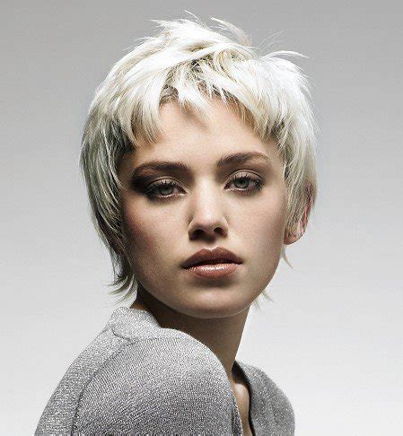 hairstyles for gray hair 2011 short gray hairstyles black hairstyles