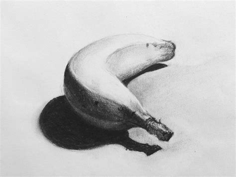 Sketches With Shading by This Banana Study Was Completed In Charcoal As Part Of