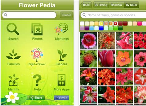 Top Apps For Gardening And Flowers Enthusiasts Techywhack Flower Garden App
