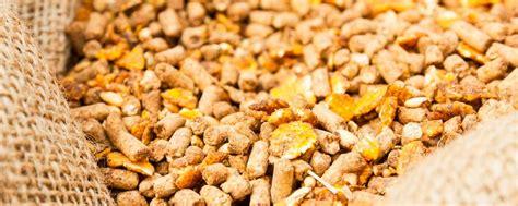 alimentos fibra soluble c 243 mo la fibra soluble mejora las propiedades de la