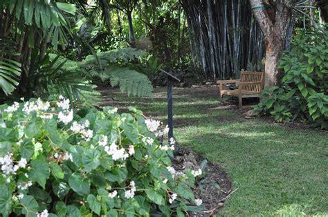 mounts botanical gardenmounts botanical garden of palm