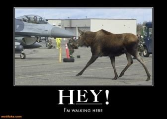 15 best images about eielson afb on pinterest