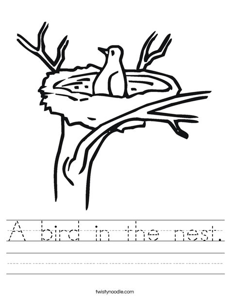 coloring pages of birds in trees a bird in the nest worksheet twisty noodle