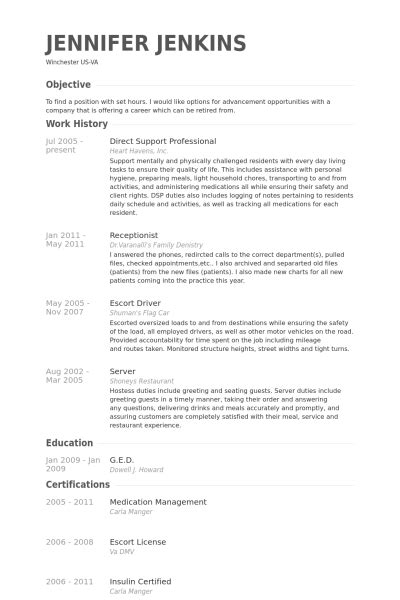 Sle Professional Resume by Direct Support Professional Resume Sle 28 Images