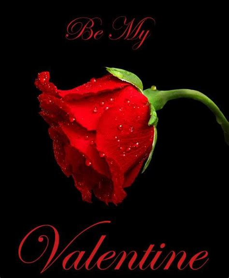 happy valentines day comments 168 best images about valentines day on