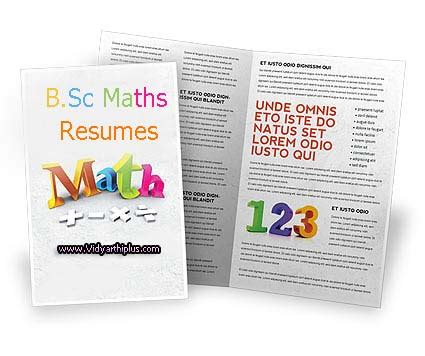Resume B Sc by B Sc Maths Resume Format And Sles