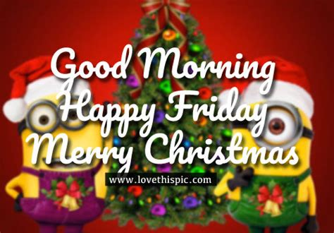 good morning happy friday merry christmas pictures   images  facebook tumblr