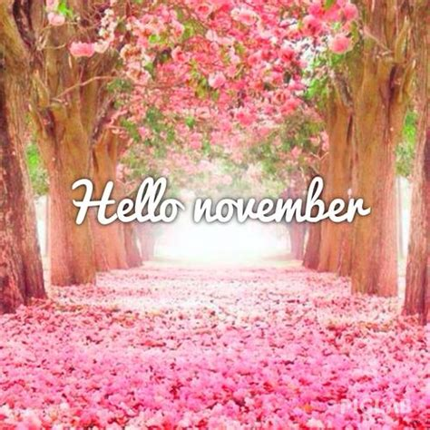 november images hello