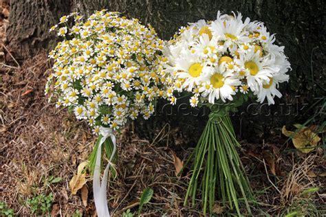 Design ideas for rustic weddings   Wedding flowers blog