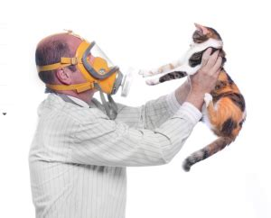 Cat Fresh Air Mask fresh air at the is healthy bring it home to create